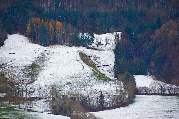 5149 / Woche 49 / Blick von Molon, Waldrand oberhalb Villarbeney FR