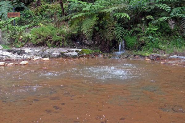 ... allerdings nicht überall - hier kommt das Wasser mit bis zu 100C aus dem Boden