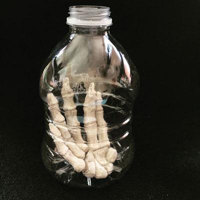 """Preserved #3"", 2019, 4.5 x 3 x 3, Ceramic, Plastic bottle"