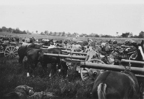 Pause im Gefecht für Pferd und Soldat (Frankreich 1940)