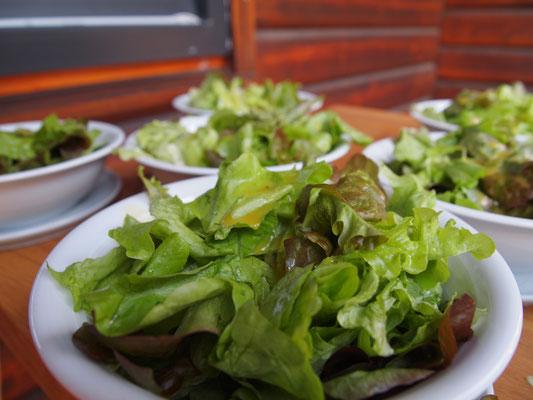 Einen so frischen Salat bekommt man sonst nirgends