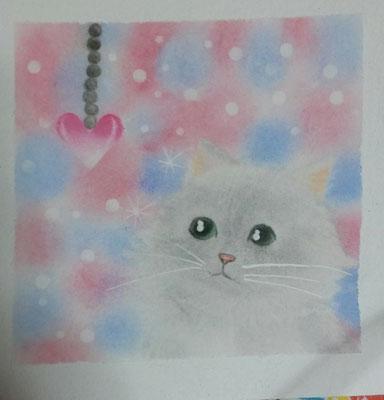 ナオミ_おしゃれ猫