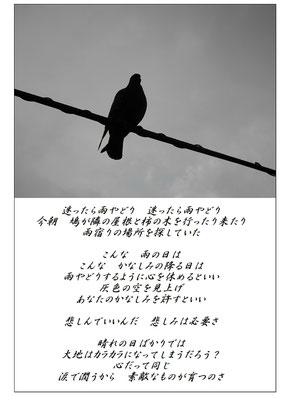 昌_雨やどり