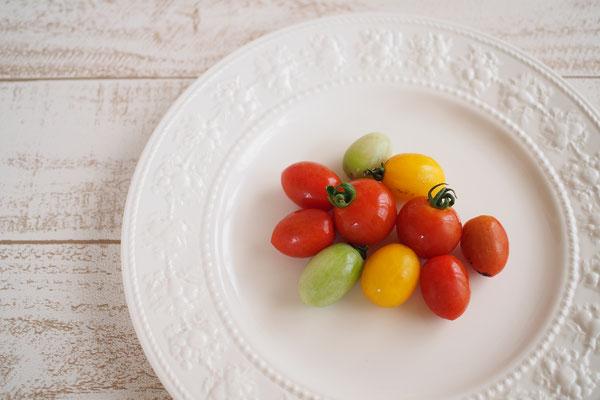 tokochan♪_Petit tomato