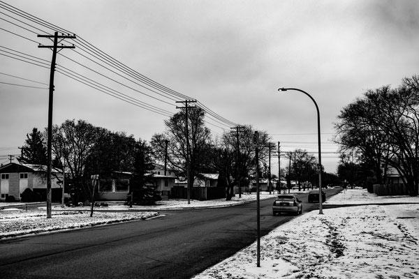 """Suburban Serenity"", 2018"