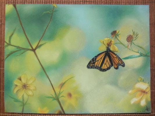 ©Art en Vrac - Lucie Geoffroy - Pastels secs sur papier pastel bleu 24x32cm