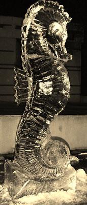 Hippocampe - Sculpture sur Glace - Saint jean de Védas - Hauteur 1,5m - Manon Cherpe