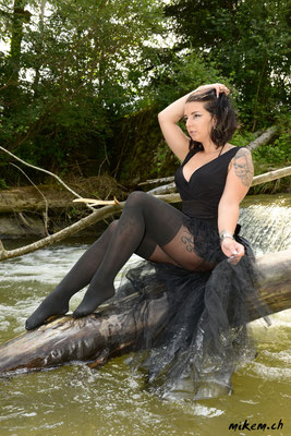 Wetlook im Fluss, Black Swan