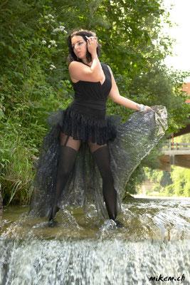 Wetlook im Fluss, Black Swan