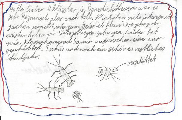 Gewässer-Postkarte