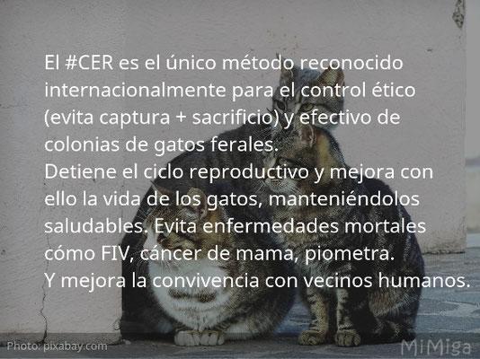 CES-CER