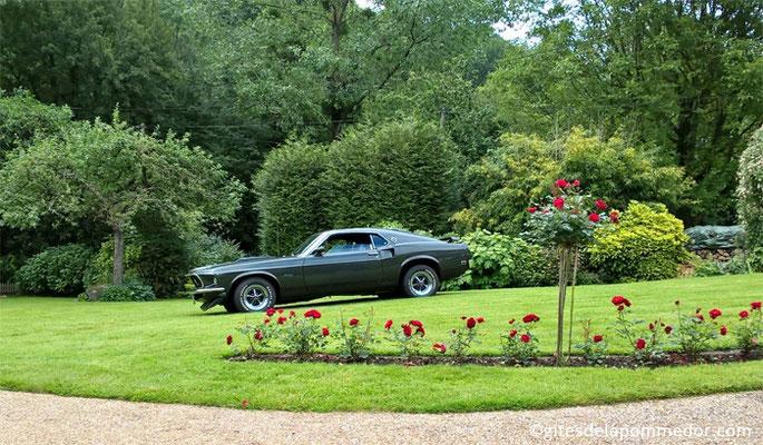 Location Ford Mustang pour une cérémonie de mariage en Normandie