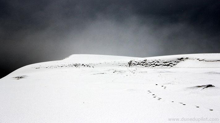 Le sommet enneigé de la Dune du Pilat