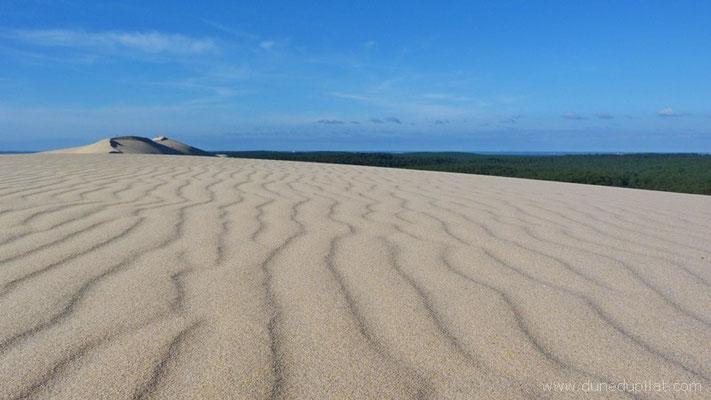La dune après le vent