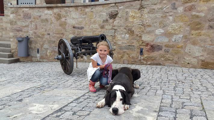 Ausstellung 2015 auf Burg Scharfenstein