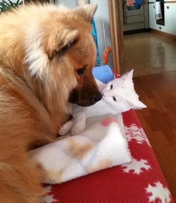 Bero mit seiner Katze Emily