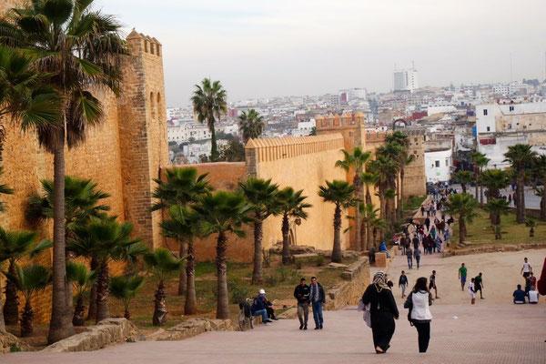Die Festungsmauer und ihre Palmen als Blickfang