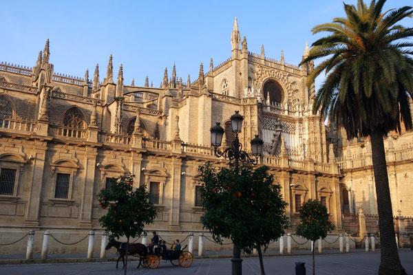 Die Kathedrale - oder ein Teil von ihr!