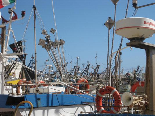 Der Park der Fischerboote ist riesig
