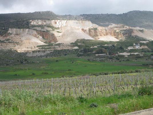 Marmorgegend mit Weinbau im Vordergrund