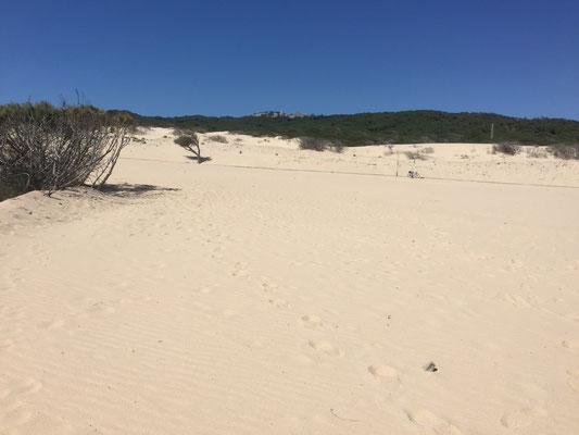 über die Dünen ....