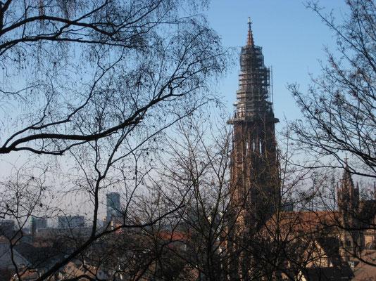 Der Freiburger-Münsterturm erscheint bald im neuen Kleid
