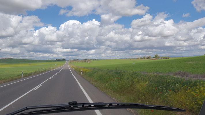 Von Andalusien in die südliche La Mancha