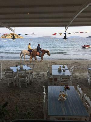 Im Winter gehört der Strand auch Pferd und Reiter