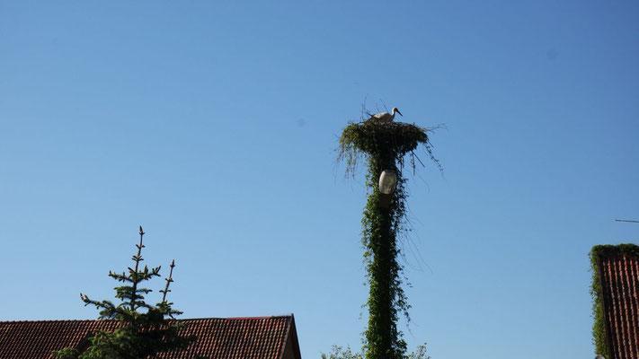 Storchenheimetli