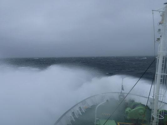 wo die Crew mit bewundernswerter  Ruhe durch die Drake Passage navigiert