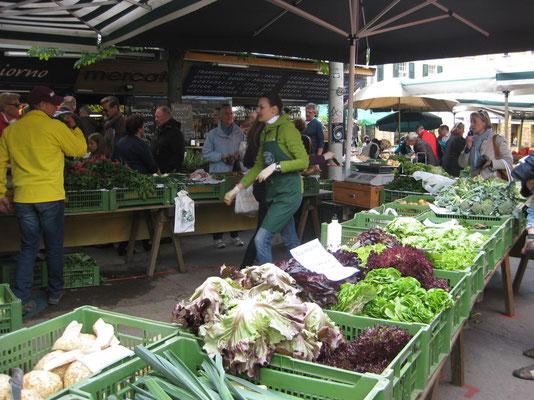 Marktfrisch vom Kaiser-Josefplatz