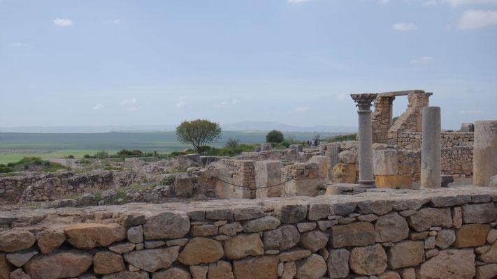 Besuch der Ausgrabungsstätte Voloubilis, ca. 27 km nördlich der Stadt Meknès
