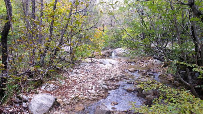 im Nationalpark Starigrad-Paklenica