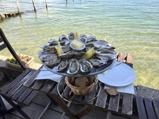 Die besten Austern gibt es seit Jahren bei Sylvie!