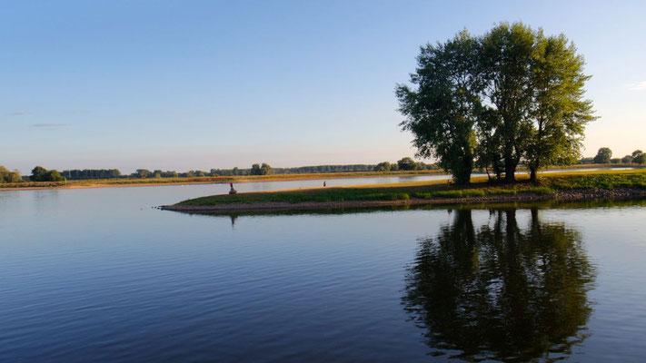 Unsere Aussicht am Elbe-Ufer auf dem Stellplatz in Wittenberge