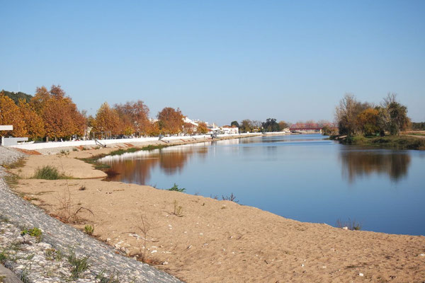 In Coruche dem Rio Sorraia entlang