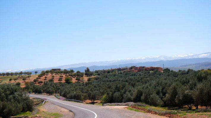 Von Marrakesch zu den Ouzoud-Wasserfällen durch die marokkanische Toscana!