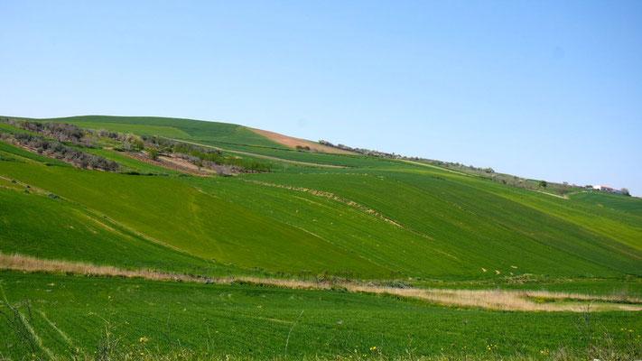 unterwegs in Mittelgriechenland