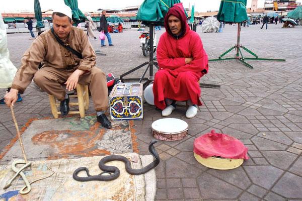 Der Schlangenbeschwörer auf dem Jemaa el Fna