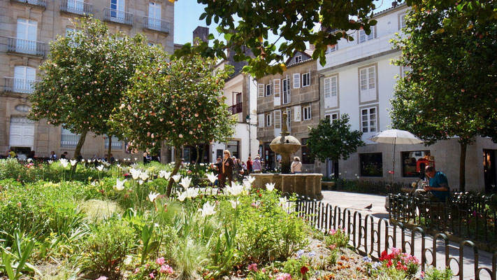 Flanieren durch Santiagos blühende Altstadt