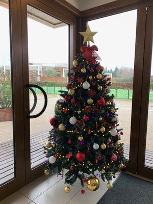 Wöhliche Freihnachten - unser Bannentaum steht dieses Jahr in der Rezeption!