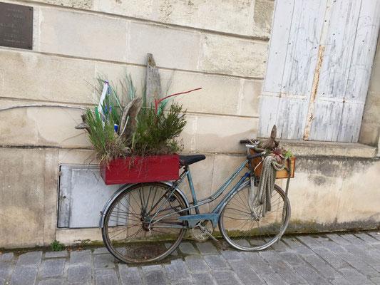 Das rollende Velogärtli, parkiert in Paulliac an der Gironde