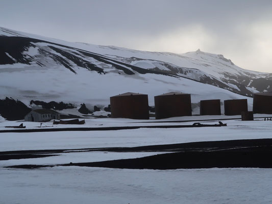 Die Überreste der norwegischen Walfangstation  sind Zeugen aus längst vergangenen Zeiten