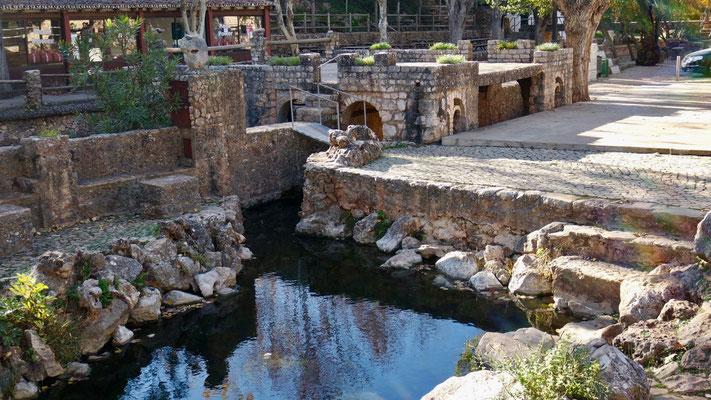Fonte Grande - die Quellen in Alte