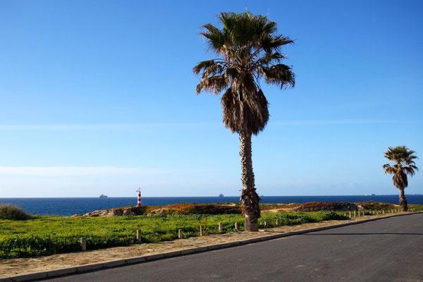 ...träumt von Palmen und Meer
