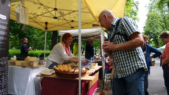 Alles Käse oder was - kleiner Markt im Bischofgarten