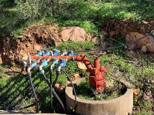 Ausgeklügelte Wassersteuerungen ......