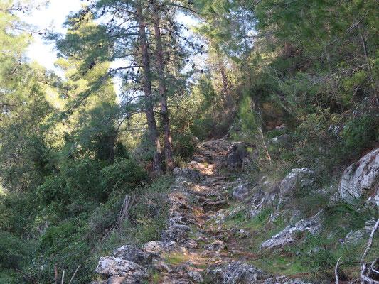 Dieser Bergpfad vermittelt direkt heimatliche Wandergefühle