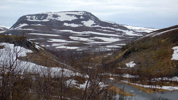 Eindrücklich: Hochalpines Erscheinungsbild bei  max. 250 m.ü.M.
