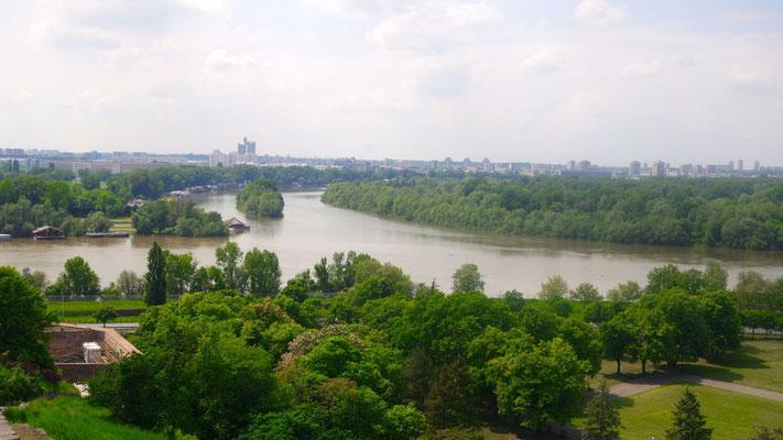 Die Sava und die Donau umarmen sich in Belgrad